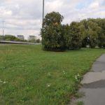 BO2020: Nowy chodnik i drzewa wyciszające na granicy Ursynowa oraz Mokotowa - jedyny projekt ogólnomiejski z Ursynowa